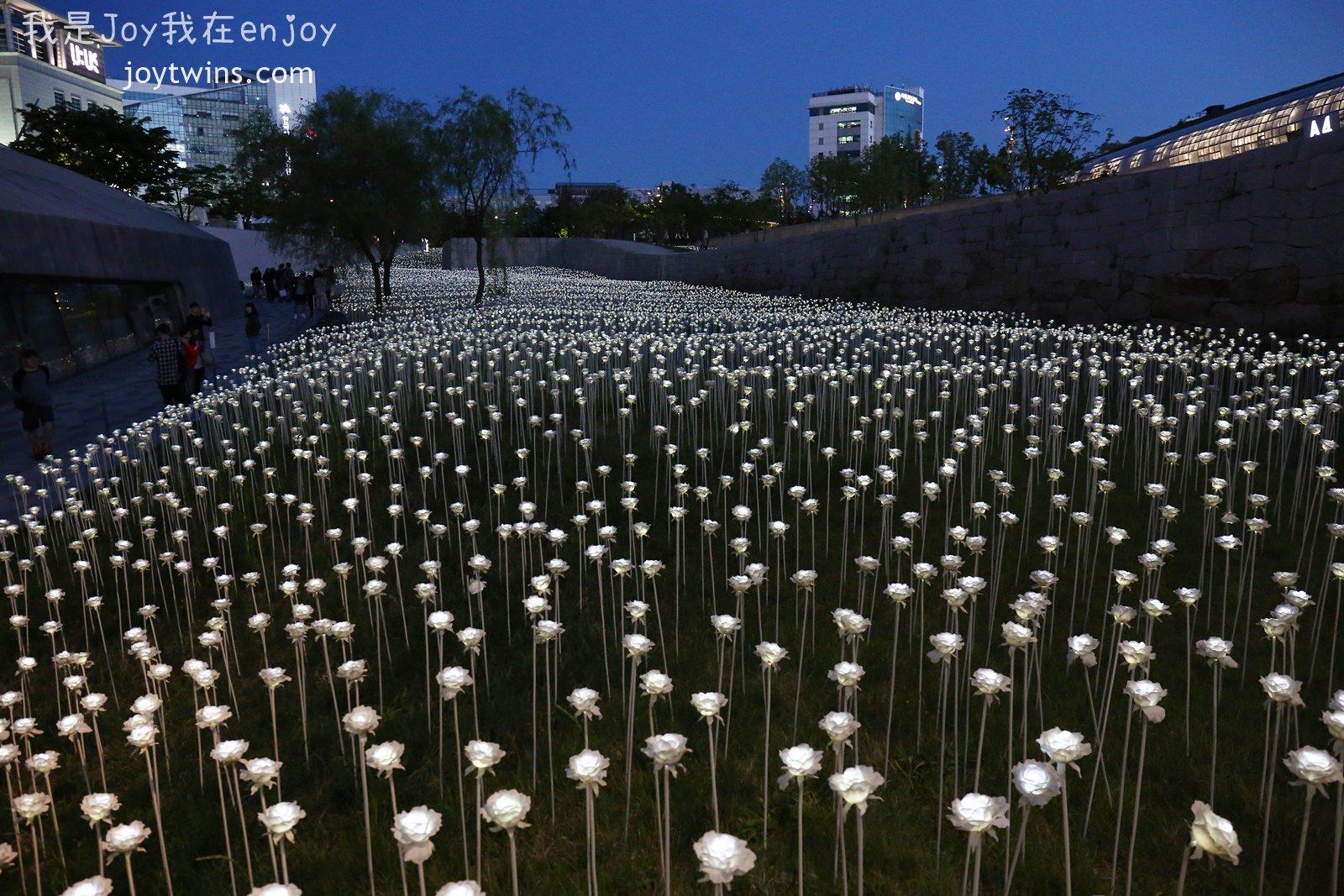 【首爾景點】東大門設計廣場 DDP 情侶拍照聖地 LED玫瑰花海超迷人 孔劉廣告拍攝