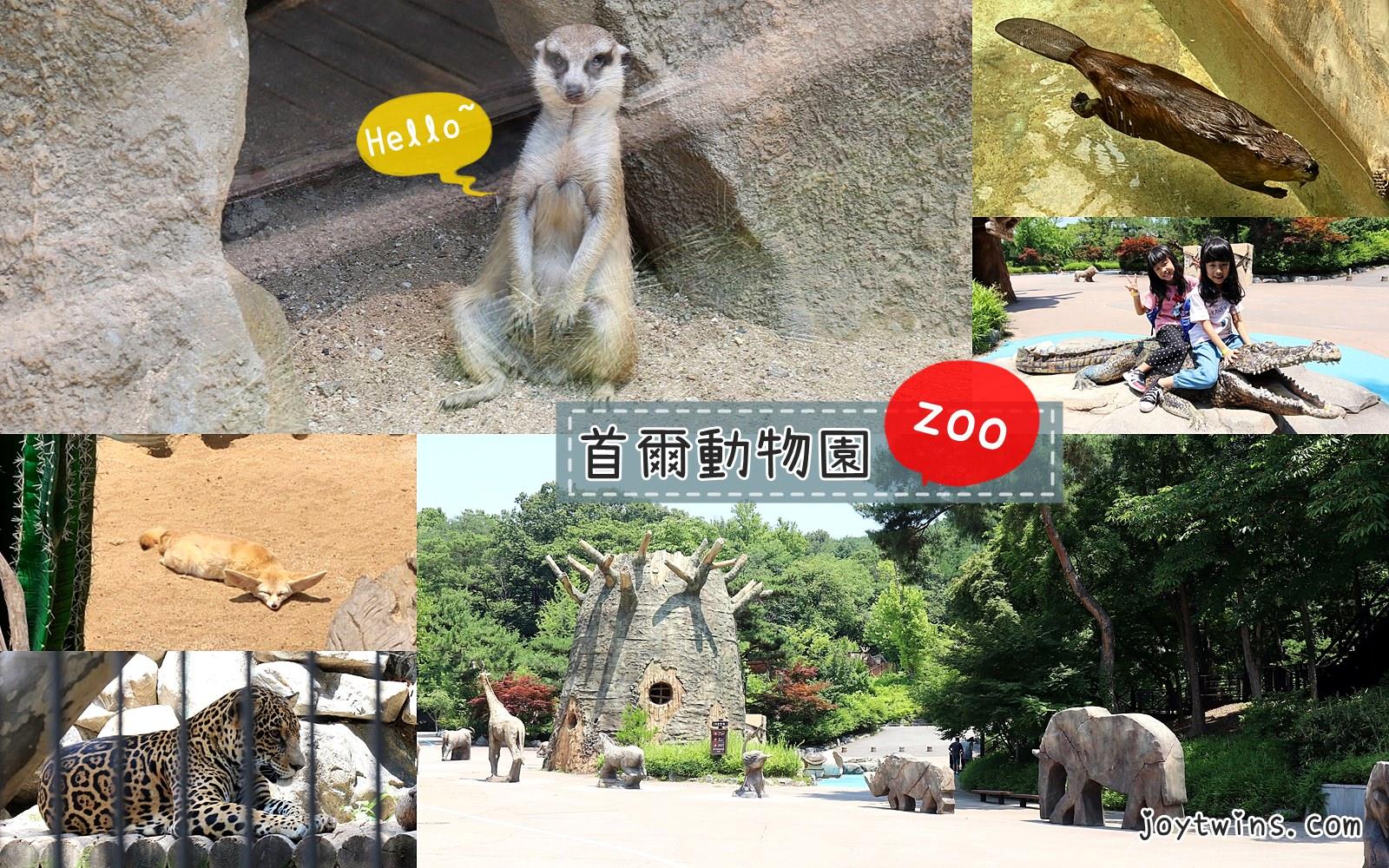首爾動物園 天空纜車 搭地鐵就能到 與動物互動樂趣多 首爾大公園站2號出口