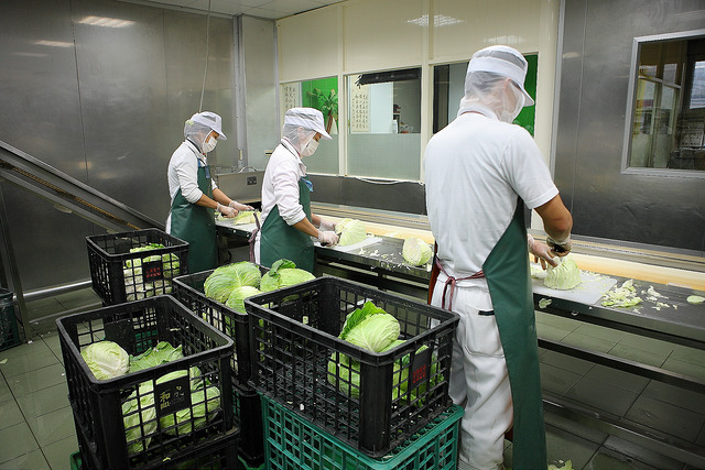 1葉菜類清洗流程_截切_A20467